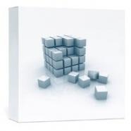 Vývojársky software