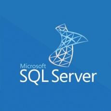 SQLSvrStd 2019 SNGL OLP NL Acdmc