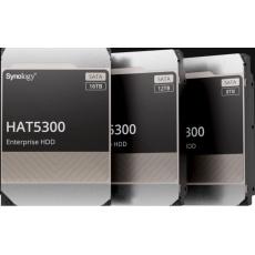 Synology HAS5300-16T (16TB, SAS 12Gb/s, 512MiB)